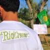 """Rossano. Torna """"Ricicreando"""", l'evento dedicato al riciclo creativo"""