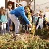 A Terranova di Pollino si festeggiano gli alberi con gli allievi del Comprensivo