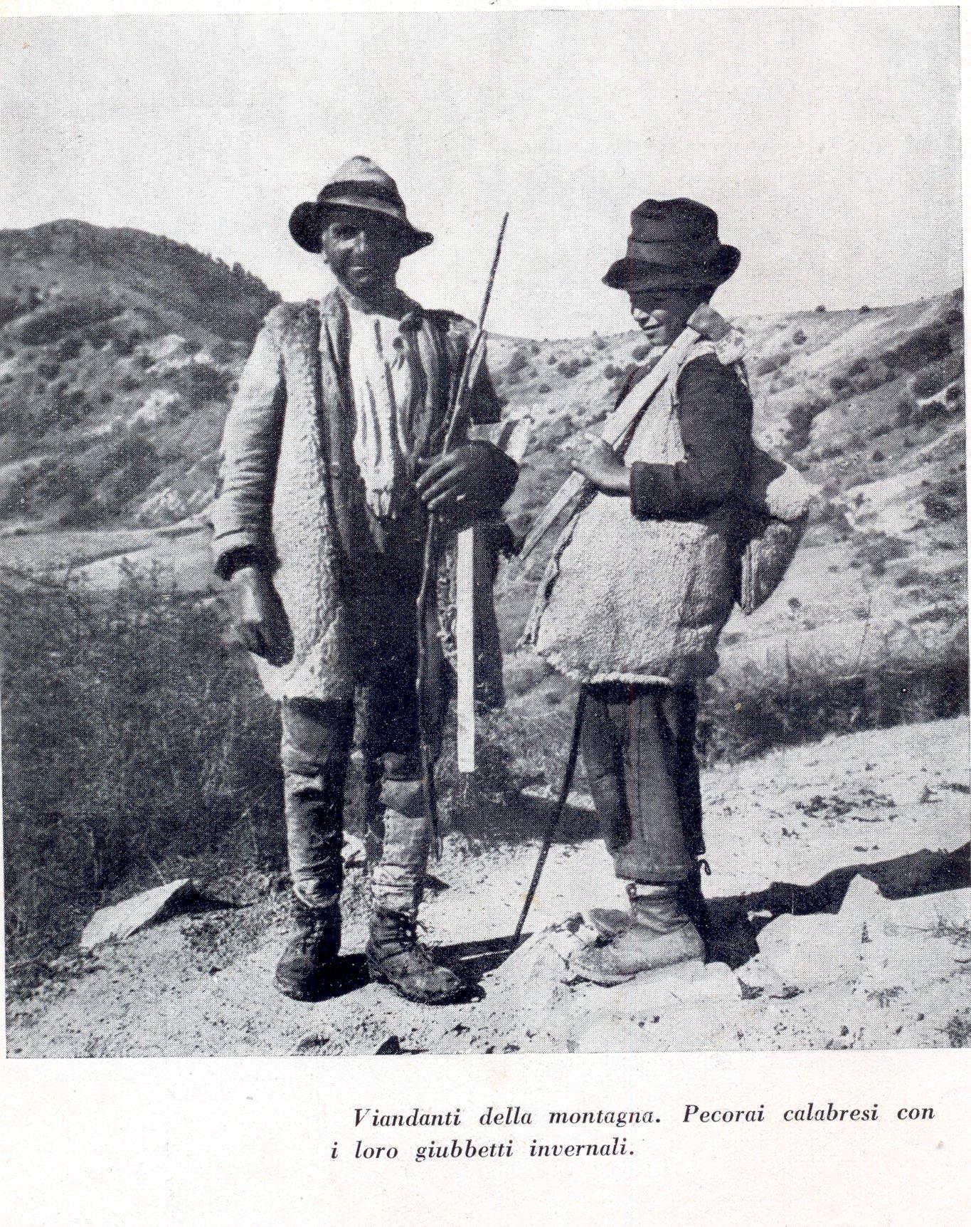 pastori col pellizzone