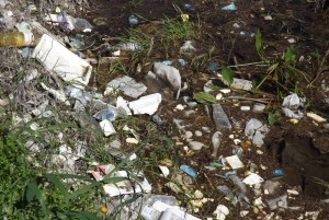 """Le immagini della spiaggia di Rossano, fornite dal movimento """"Terra e Popolo"""""""