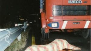 camion bergamini