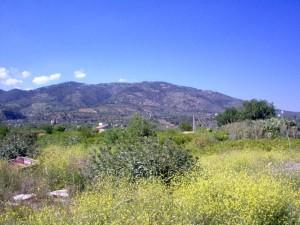 Il Monte Mostarico