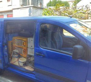 furgone-ocn-galline