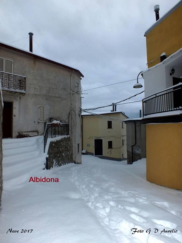 albidona-dario-giuseppe-aurelio